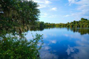 florida surface water river lake